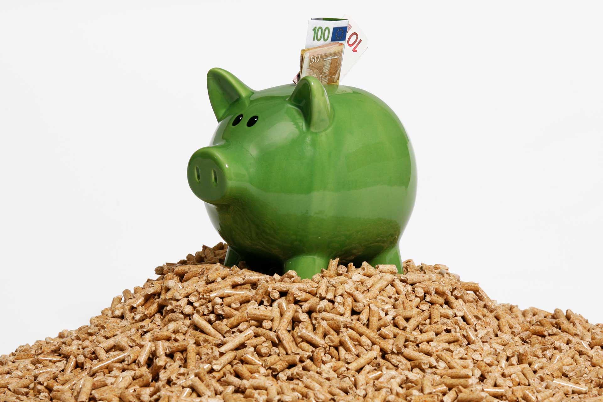 Sparschwein auf Holzpellets, Quelle: DEPI